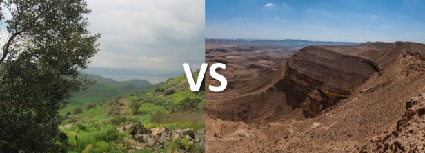 desert-vs-green