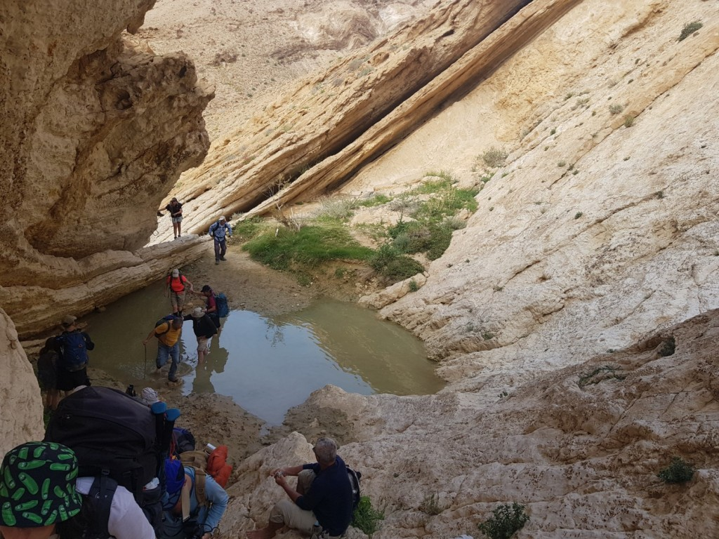 Water crossing in Nahal Afran on the Israel National Trail