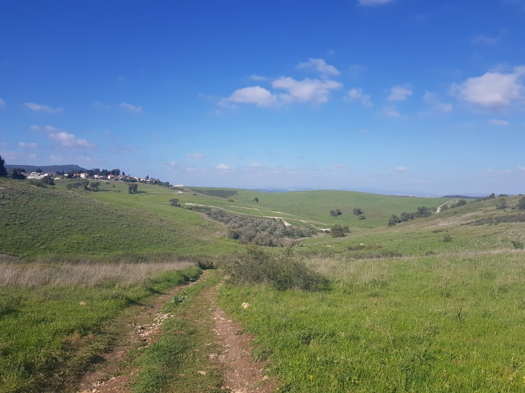 The way down from the Regional Council of Megiddo