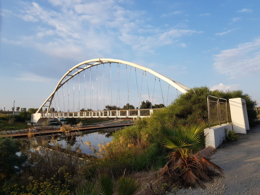 The harp bridge at Nahal Hadera Park on the Israel National Trail